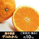 【約10kg】熊本県産 熟 ...