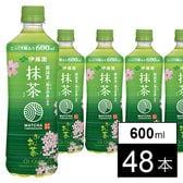 抹茶入りおーいお茶 PET600ml 桜パッケージ