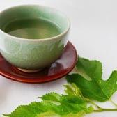 有機桑茶「桑恵茶(そうけいちゃ)」