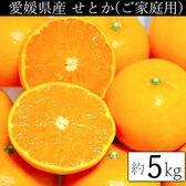 【約5kg】愛媛県産 せとか(ご家庭用・傷あり)