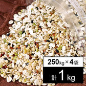 健康元気な21穀米 250gx4袋(1kg)
