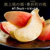 【予約受付】7/25~順次出荷 合計約3kg(1箱約1.5kg×2箱)献上桃の郷 特選「雅」