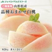 【予約受付】9/1~順次出荷【秀品】山形県産品種おまかせ白桃約3kg(8-14玉)