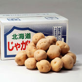 【予約受付】10/10~順次発送【10kg】北海道産男爵いも