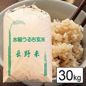 【30kg】 令和元年産長野県南信(上伊那)産コシヒカリ 1等玄米30kgx1袋
