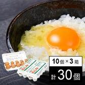 【計30個/10個×3パック】赤玉 大 ※破卵保障5個含む