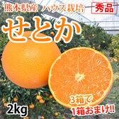 【予約受付】2/7~順次配送【2kg】秀品 熊本県産 せとか ハウス栽培