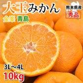 【約10kg】 大玉みかん 秀品 金峯 青島 熊本県産
