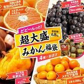 《150セット限定》【計6.8kg/5種】旬な果物が一気に楽しめる!超大盛 フルーツ福袋