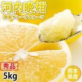 【約5kg】熊本県産 秀品 河内晩柑