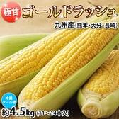【予約受付】6/8~順次配送【約4.5kg】ゴールドラッシュ とうもろこし 九州産
