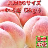 【予約受付】7/20~順次出荷【特大2kg以上/4~6玉】山梨 桃名人笠井農園の桃