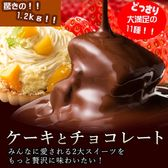 【1.2kg】パティシエきよちゃん厳選11種の割れチョコ