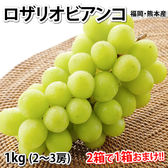 【予約受付】9/8~順次出荷【1kg 2~3房】福岡・熊本産 ロザリオ・ビアンコ