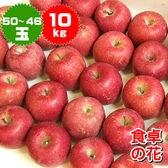 【予約受付】11/10~順次出荷【10kg(50-46玉)】ご家庭用小玉 サンふじりんご産地箱入り