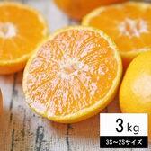 【3kg(3S-2Sサイズ込み)】ちび玉 吉田みかん  (ご家庭用、葉傷・枝傷・黒点等あり)