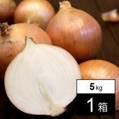 【5kg箱】淡路島産玉ねぎ