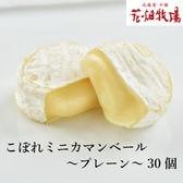 【計750g(約30個)】花畑牧場 こぼれミニカマンベール(プレーン)※形状不良品 250g×3袋