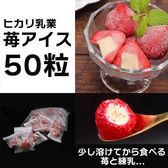 【50個入】苺アイス/苺のフレッシュ感&濃厚なミルク味の絶妙なバランス!
