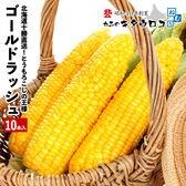 【予約受付】8/23~順次出荷【10本入】とうもろこしの王様北海道産 ゴールドラッシュ
