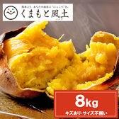 【予約受付】11/20~順次出荷【8kg】種子島産安納芋※家庭用(傷あり サイズ不揃い)