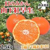 【予約受付】11/25~順次出荷【2.5kg】山下紅早生みかん 熊本県産