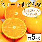 【予約受付】11/30~順次出荷【約5kg】愛媛県産 スイートまどんな(良品)