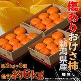 【計6kg 約2kg×3箱(1箱:目安として6~16玉)】新潟県産 無選別『おけさ柿』※簡易包装