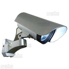 カメラに見えるセンサーライト