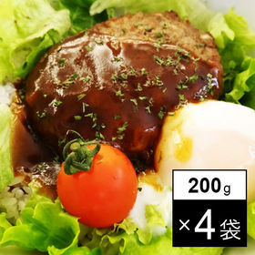 レトルト 野菜入りデミグラスハンバーグ 4袋