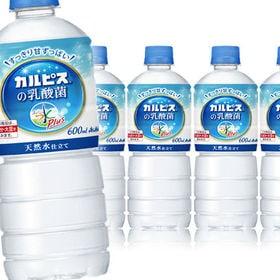 【24本】アサヒ おいしい水プラス 「カルピス」の乳酸菌PET600ml(自販機用)
