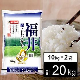 【20kg】29年産 福井県産コシヒカリ