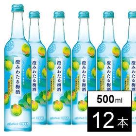 澄みわたる梅酒 500ml×12本