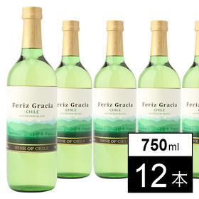 フェリース グラシア ソーヴィニヨンブラン 白 750ml