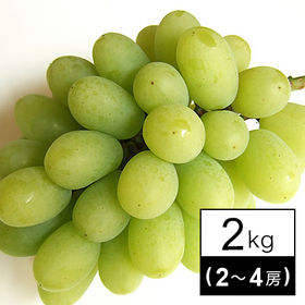 【予約受付】辻さんの翠峰ぶどう(岡山) 2kg(2~4房)