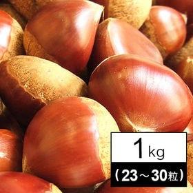 【予約受付】生栗(愛媛、熊本)1kg(23~30粒前後)※2Lサイズ以上