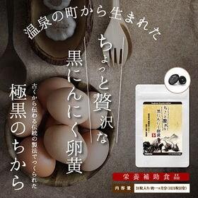 【2個セット】ちょっと贅沢な黒にんにく卵黄 31粒
