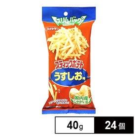 湖池屋 スティックポテトうすしお味 40g×24個 (6×4...