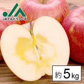 [約5kg]【秀品】山形県産サンふじりんご※JA共選品