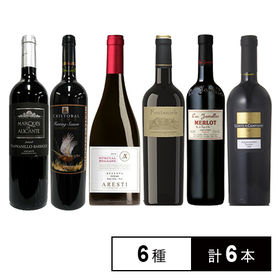 果実味溢れる赤ワイン飲み比べ 6本セット