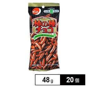 Eサイズ 柿の種チョコ 48G×20個