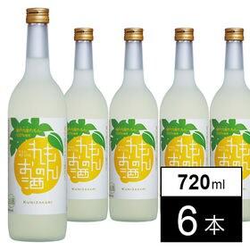 國盛 れもんのお酒 720ml×6本