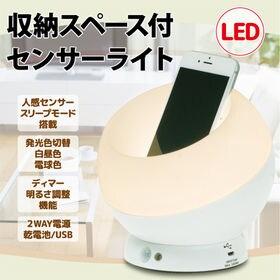 [1個]収納スペース付 LED人感センサーライト (発光色切...