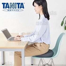 タニタ (TANITA)/タニタサイズ バランスクッション(...