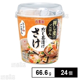 スープdeごはんさけ茶漬け 66.6g×24個