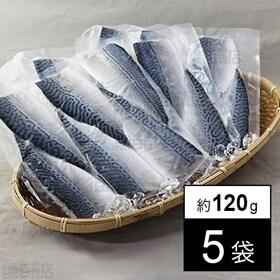 【5袋】プレミアムしめさば 小 キズ