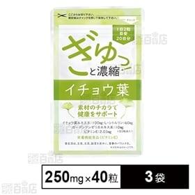 ぎゅっ!と濃縮イチョウ葉 10g(250mg×40粒)