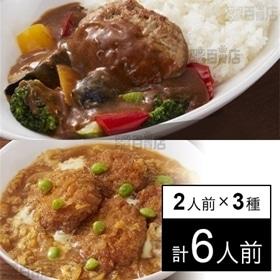 【冷凍】2人前×3種 ミールキット(ひれかつ煮、カレーハンバ...