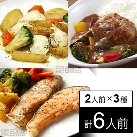 【冷凍】ミールキット 2人前×3種(カレーハンバーグ、白身魚...