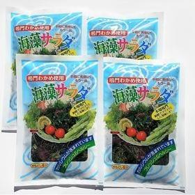 鳴門海藻生サラダ 100g×4袋セット